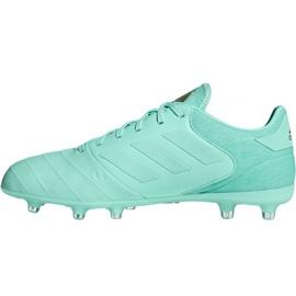 Buty piłkarskie adidas Copa 18.2 FG M DB2446 niebieskie 2
