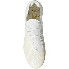 Buty piłkarskie adidas X 18.1 FG M DB2247 2