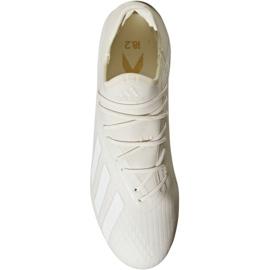 Buty piłkarskie adidas X 18.2 Fg M DB2181 białe białe 2