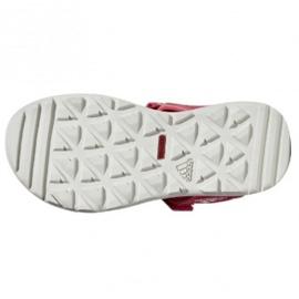 Sandały adidas Capitan Toey Jr BC0702 różowe 1