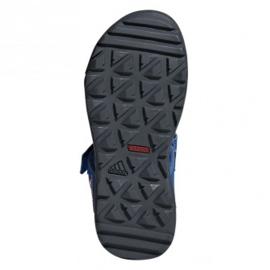 Sandały adidas Capitan Toey Jr BC0703 niebieskie 1
