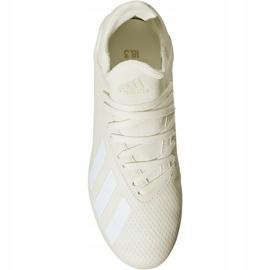 Buty piłkarskie adidas X 18.3 Fg Jr DB2417 białe wielokolorowe 2