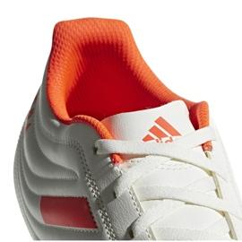 Buty piłkarskie adidas Copa 19.4 Sg M D98067 białe wielokolorowe 2