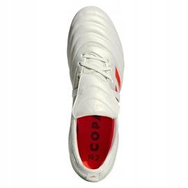Buty piłkarskie adidas Copa Gloro 19.2 Fg M D98060 białe wielokolorowe 2