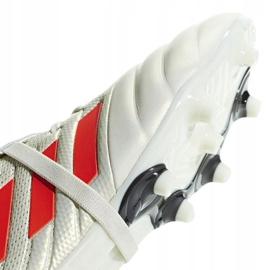 Buty piłkarskie adidas Copa Gloro 19.2 Fg M D98060 białe wielokolorowe 3