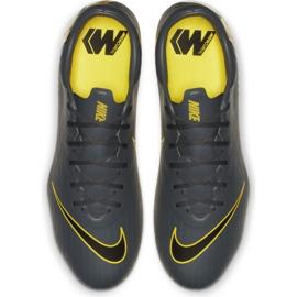 Buty piłkarskie Nike Mercurial Vapor 12 Pro Fg M AH7382-070 szare szare 2