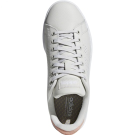 Buty adidas Advantage W F36480 beżowy 2