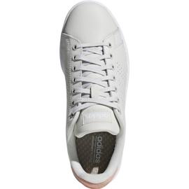 Buty adidas Advantage W F36480 brązowe 2