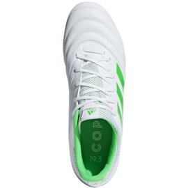 Buty piłkarskie adidas Copa 19.3 Fg M BB9188 niebieskie białe 2