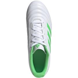 Buty piłkarskie adidas Copa 19.4 Fg M D98069 białe biały, zielony 2
