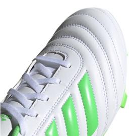 Buty piłkarskie adidas Copa 19.4 Fg M D98069 białe biały, zielony 3