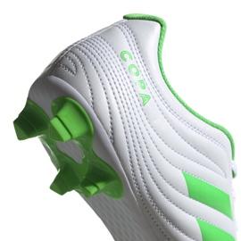 Buty piłkarskie adidas Copa 19.4 Fg M D98069 białe biały, zielony 4