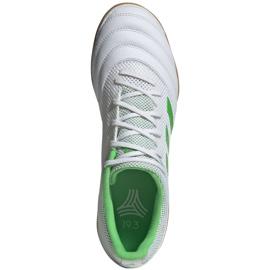 Buty halowe adidas Copa 19.3 In Sala M BC0559 białe biały 1