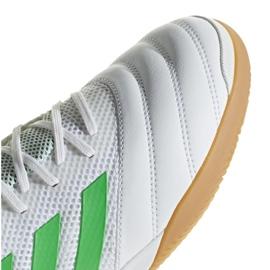 Buty halowe adidas Copa 19.3 In Sala M BC0559 białe biały 3