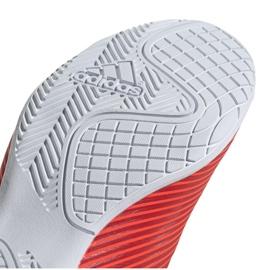 Buty halowe adidas Nemeziz 19.4 In M F34528 czerwone czerwone 5