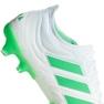 Buty piłkarskie adidas Copa 19.1 Fg M BB9186 biały białe 1
