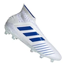 Buty piłkarskie adidas Predator 19+ Fg M BC0548 biały białe 2