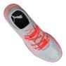 Buty halowe Puma Future 4.4 It M 105691-01 szare czerwony, szary/srebrny 2