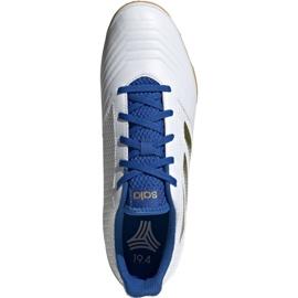 Buty piłkarskie adidas Predator Sala 19.4 In M EG2827 białe 1