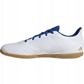 Buty piłkarskie adidas Predator Sala 19.4 In M EG2827 białe 2