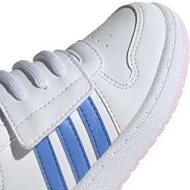 Buty adidas Hoops Mid 2.0 I Jr EE8550 białe 3