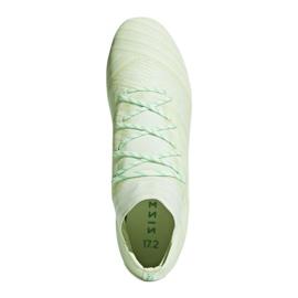 Buty piłkarskie adidas Nemeziz 17.2 Fg M CP8973 wielokolorowe zielone 2