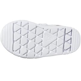 Buty adidas Altasport Cf I Jr D96846 białe fioletowe 6