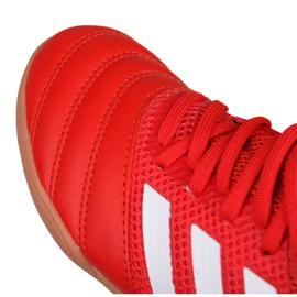 Buty halowe adidas Copa 20.3 In Sala Jr EF1915 czerwone czerwone 2