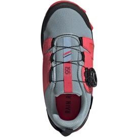 Buty adidas Terrex Agravic Boa K Jr EH2687 1