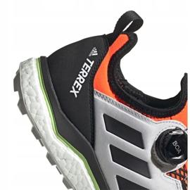 Buty adidas Terrex Agravic Boa M EH0200 5