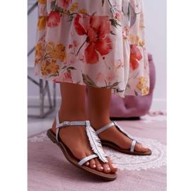 Sandały Damskie Płaskie Skórzane Srebrne Nicole 2383 szare 1