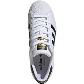 Buty adidas Superstar W FV3284 białe 1
