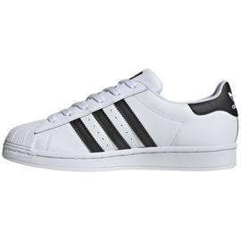 Buty adidas Superstar W FV3284 białe 2
