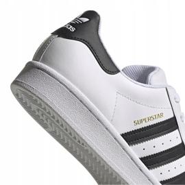 Buty adidas Superstar W FV3284 białe 4