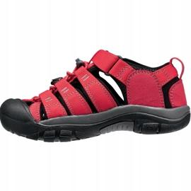 Sandały Keen Newport H2 Jr 1012318 czerwone 1