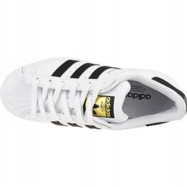 Buty adidas Superstar Jr FU7712 białe 2