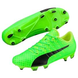 Buty piłkarskie Puma Evo Power 3 Fg 103956 01 zielone 2