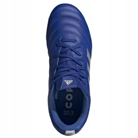Buty piłkarskie adidas Copa 20.3 Fg Jr EH1810 białe niebieskie 1
