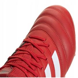 Buty piłkarskie adidas Copa 20.3 Fg czerwone G28551 3