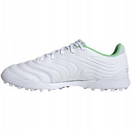 Buty piłkarskie adidas Copa 19.3 Tf D98064 białe białe 2