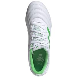 Buty piłkarskie adidas Copa 19.3 Tf D98064 białe białe 1