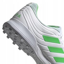 Buty piłkarskie adidas Copa 19.3 Tf D98064 białe białe 5