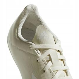 Buty piłkarskie adidas X 18.4 FxG Jr DB2421 beżowy wielokolorowe 4