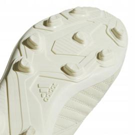 Buty piłkarskie adidas X 18.4 FxG Jr DB2421 beżowy wielokolorowe 5