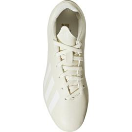 Buty piłkarskie adidas X 18.4 FxG Jr DB2421 beżowy wielokolorowe 2