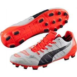 Buty piłkarskie Puma Evo Power 1.2 Ag 103213 05 szare 3