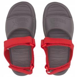 Sandały dla dzieci Puma Divecat v2 Injex Ps szaro-czerwone 369546 05 szare 1