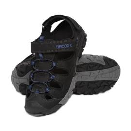 Vices 7SD9146-R-156-black/blue czarne niebieskie 1