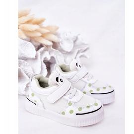 Apawwa Dziecięce Sportowe Buty Z Pandą Biało-Zielone Chico białe 5