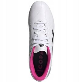 Buty piłkarskie adidas Copa Sense.4 FxG M FW6536 wielokolorowe białe 2
